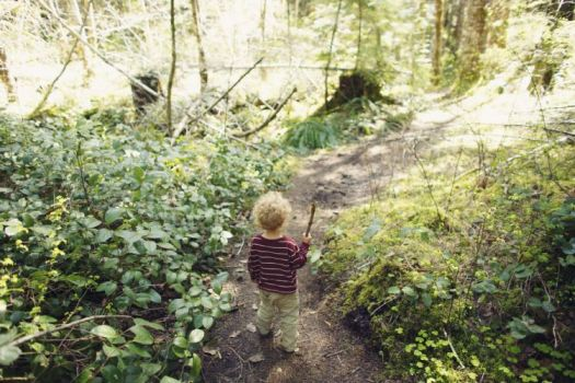 boy-in-woods_istock_small